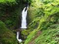 神奈川県秦野市 髭僧の滝